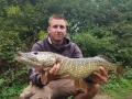 11lb Pike