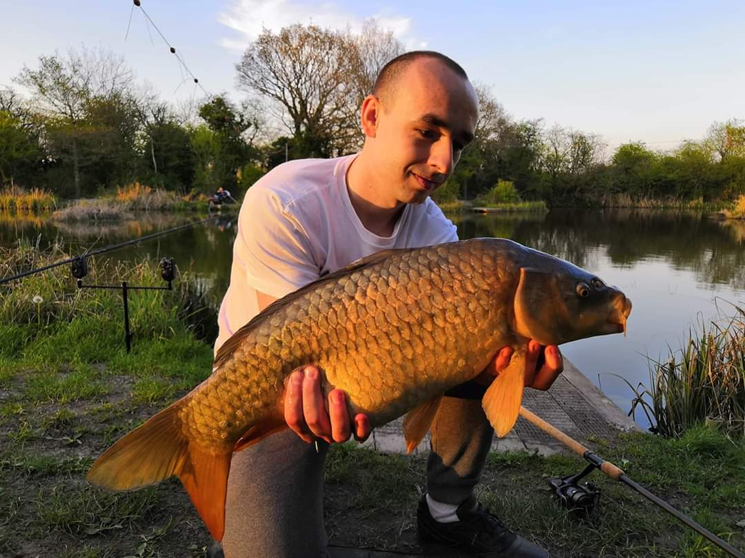 Common Carp off the point