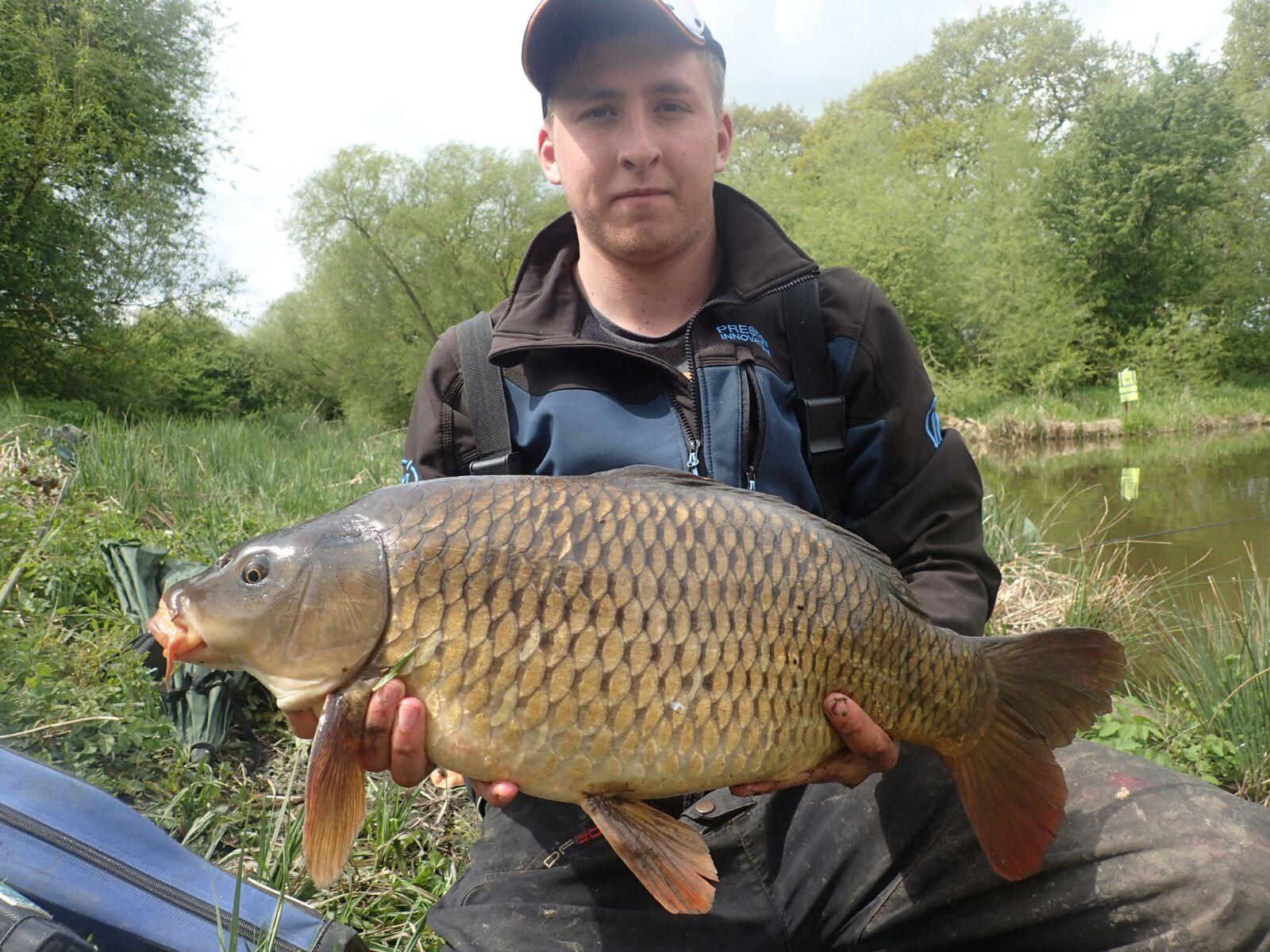 Adam 16lb Common Carp